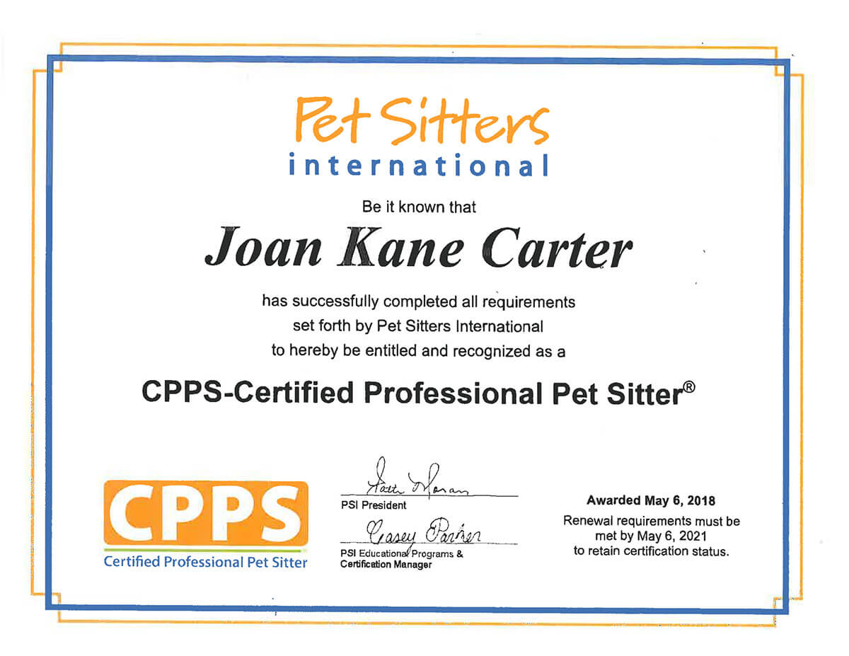 Joanies Purrfect Care Pet Sitting And Pet Care In New Smyrna Beach